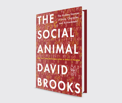 the social animal book cover